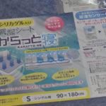 【口コミ】布団のカビ対策には除湿・調湿シートがおすすめ!【西川リビング からっと寝】
